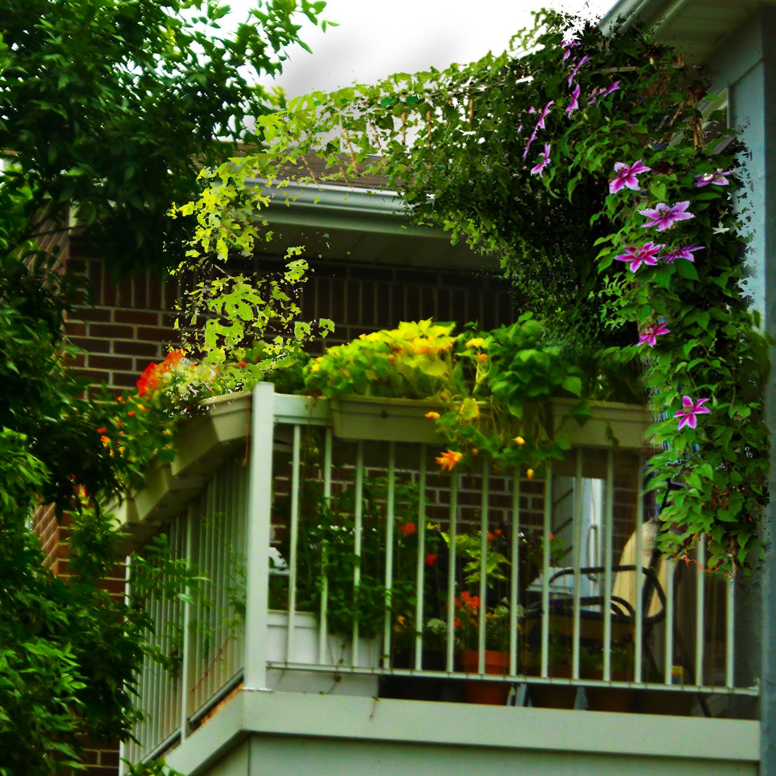 Green Balcony Ideas Green Balcony Ideas11