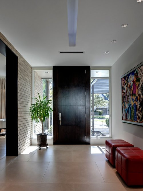 Modern Foyer Ideas Front Door