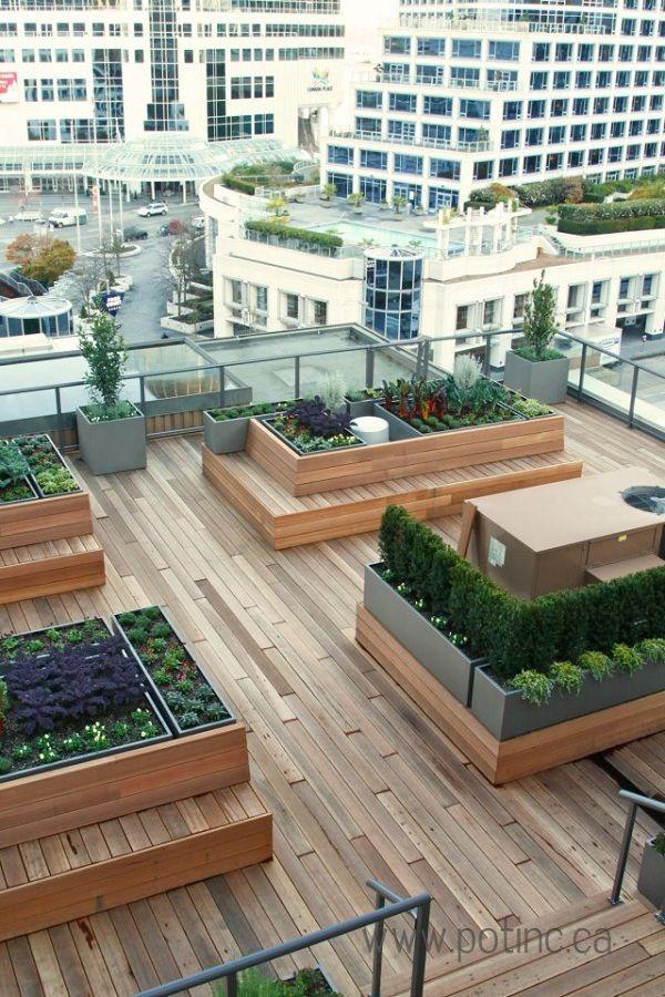Rooftop Garden 25 Best Ideas About Rooftop Gardens On Pinterest