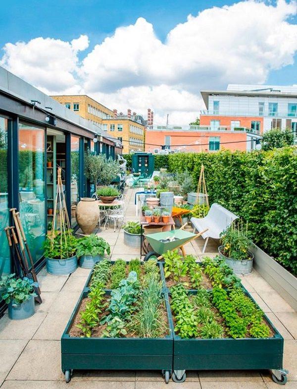 Rooftop Garden 5 Roof Garden Designs Worth Looking at