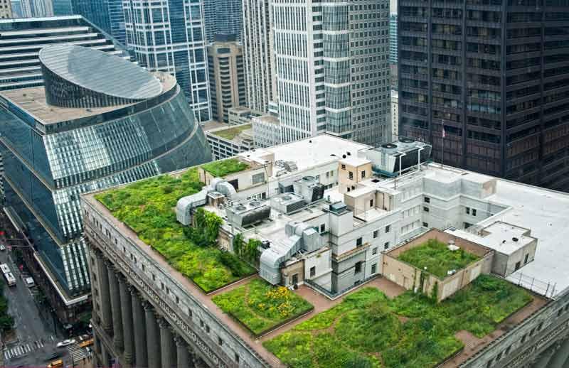 Rooftop Garden Episode 122 – Green Roofs & Rooftop Gardens Growing A