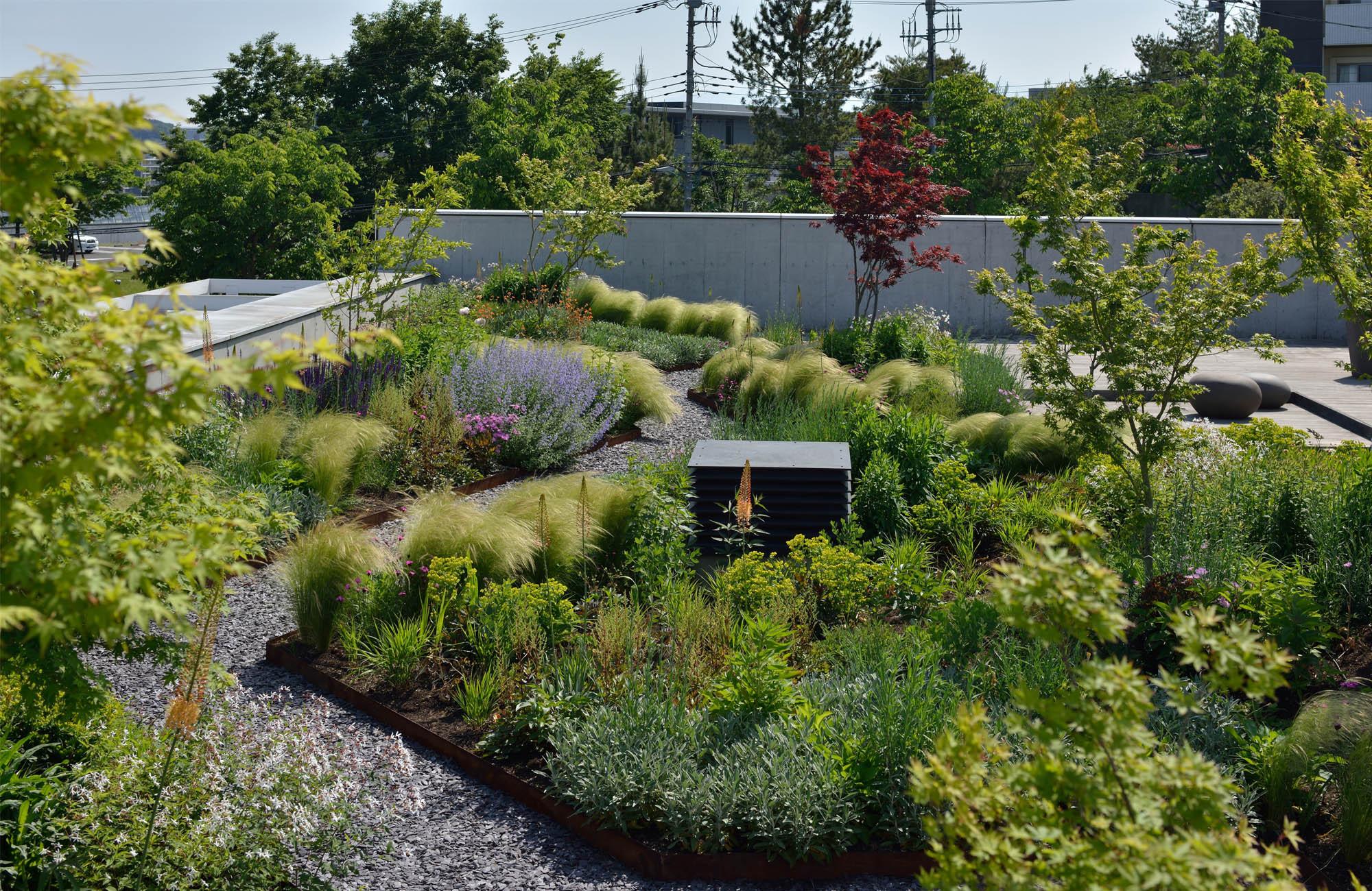 Rooftop Garden Green Wise Headquarters Roof Garden