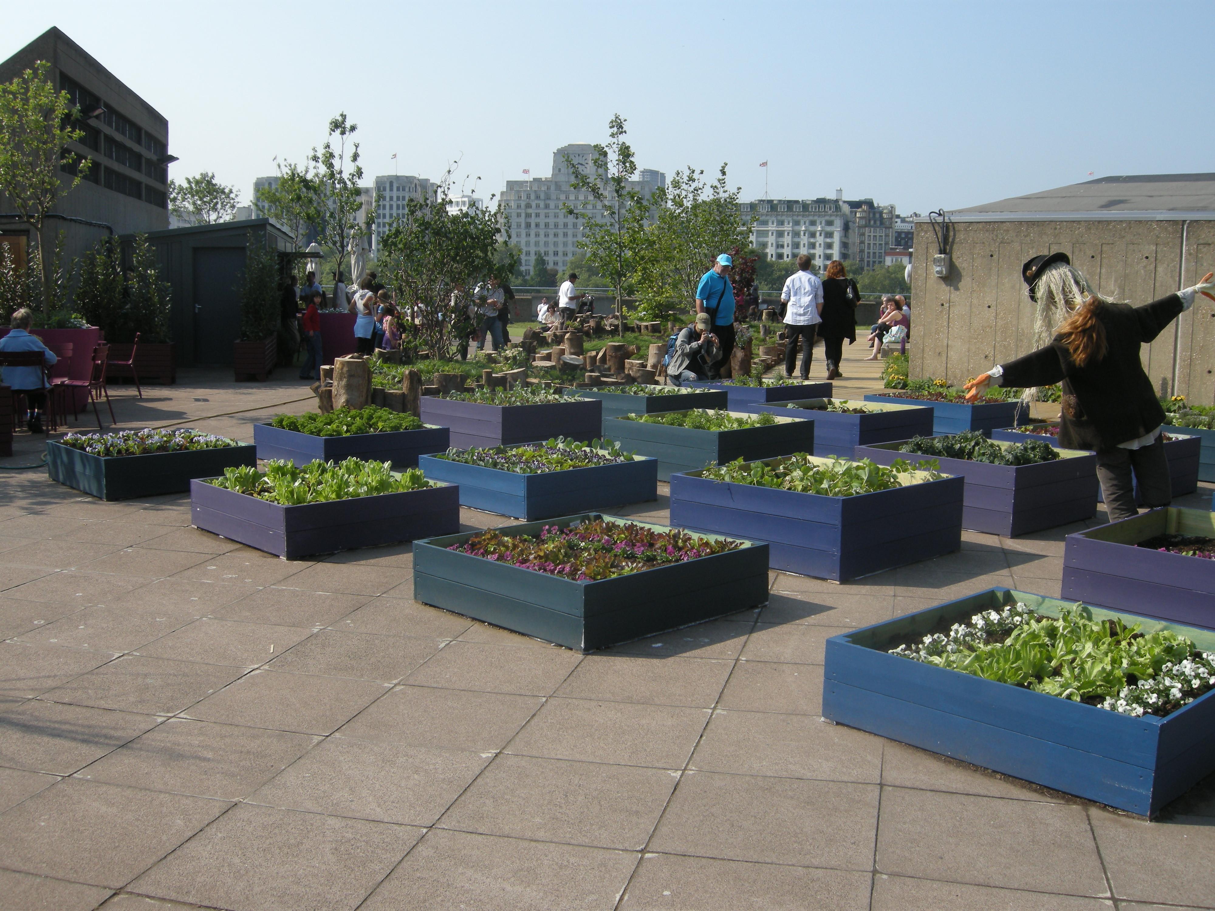 Rooftop Garden Queen Elizabeth Hall Roof Garden London – Created for