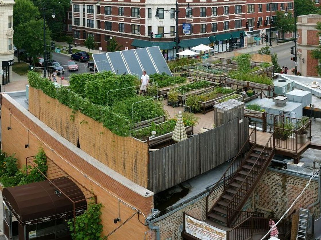 Rooftop Garden Rooftop Farming is Getting F the Ground