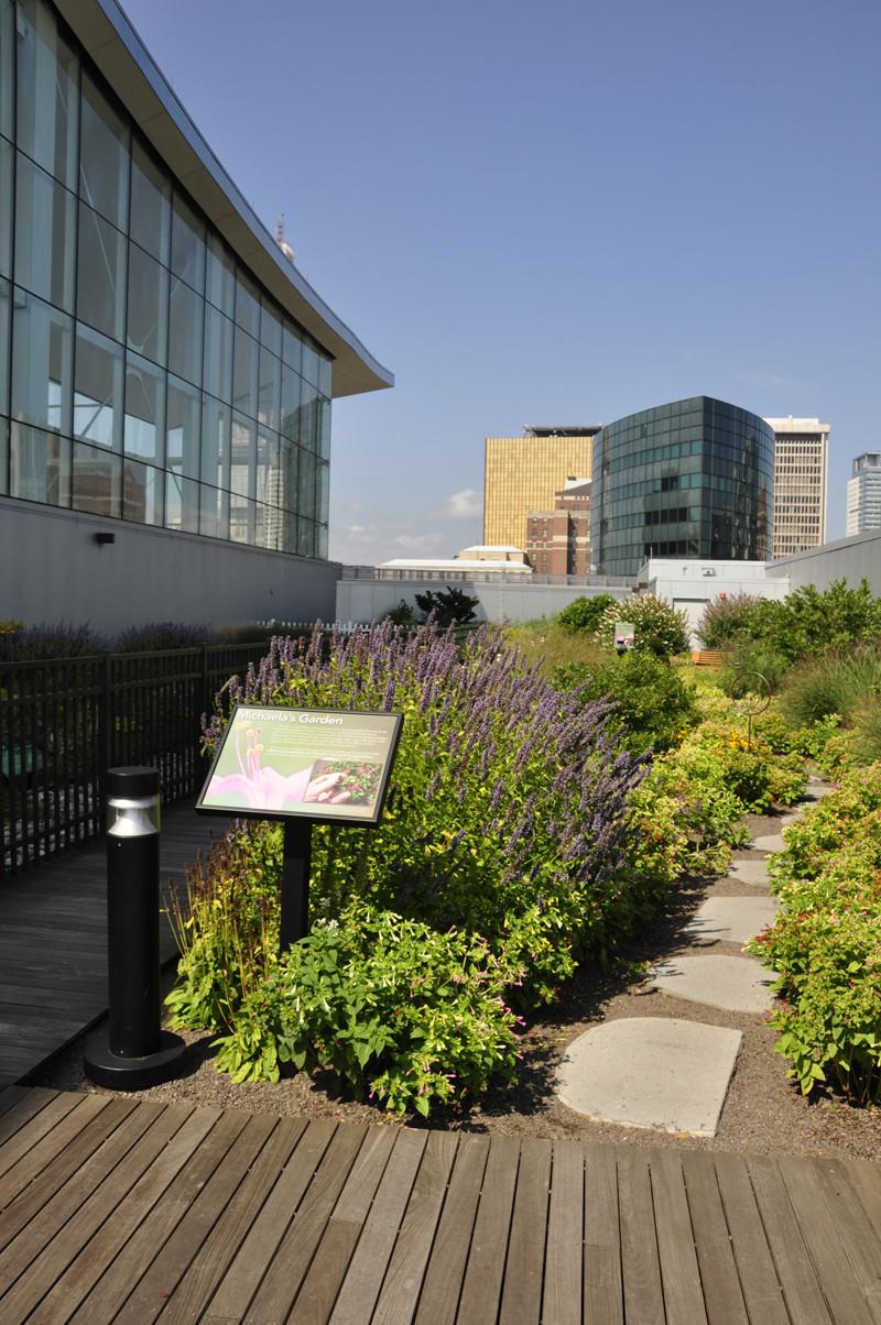 Rooftop Garden Rooftop Garden