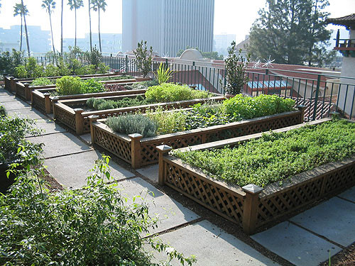 Rooftop Garden Rooftop Gardens In Australia are On the Rise
