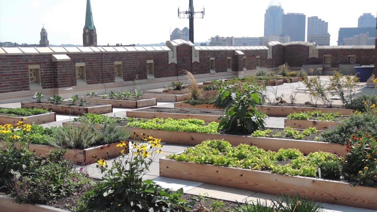 Rooftop Garden Rothenberg Rooftop Garden Project Of the Week 11 3 14
