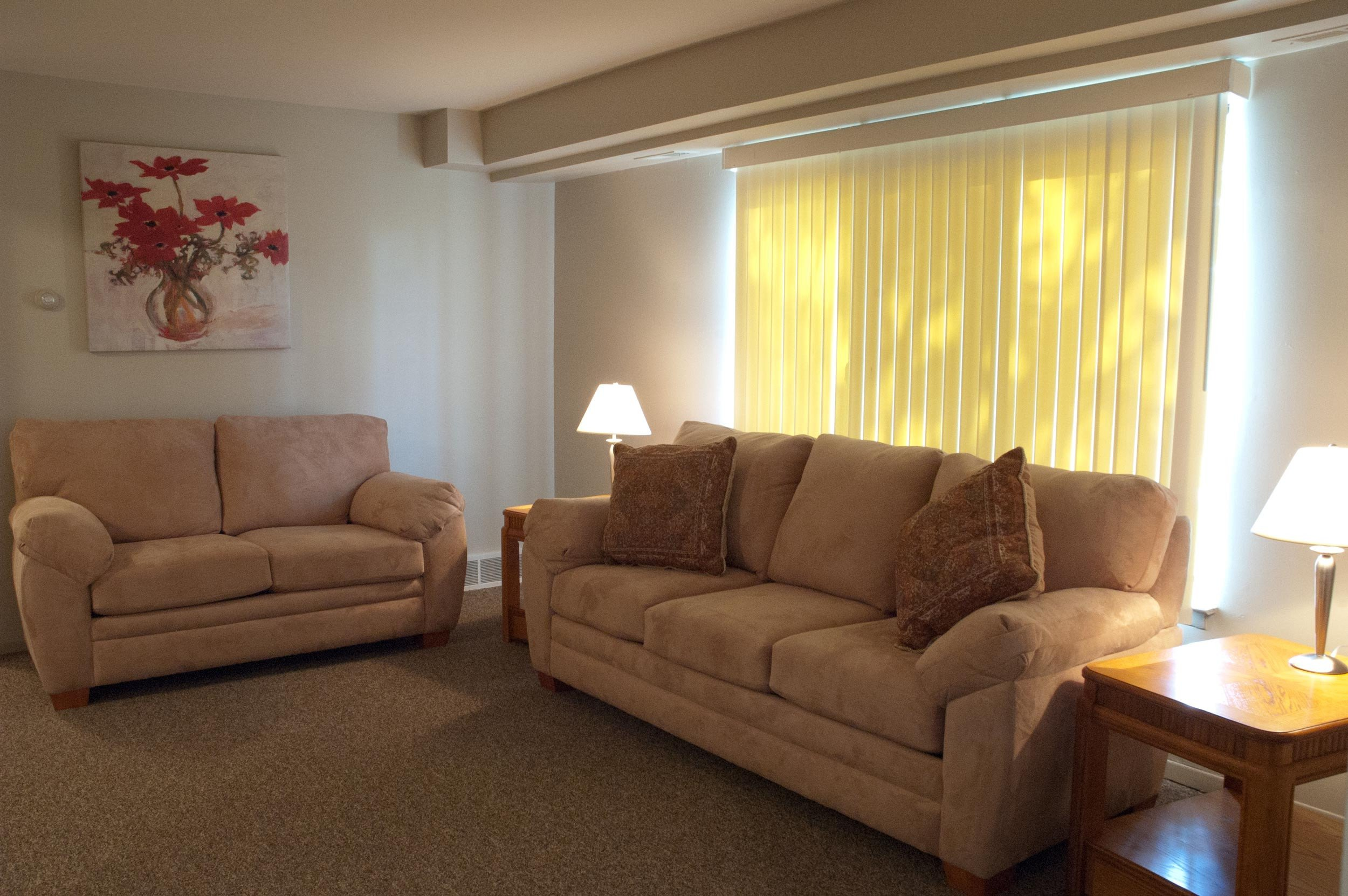 Apartment Living Room Decorating Garden City Specialized Residential Program Rainbow