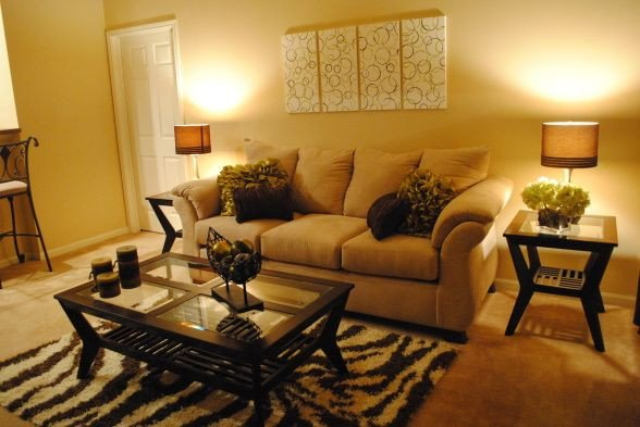 Budget Living Room Decorating Ideas College Apartment Living Room Hi Im A College Student On