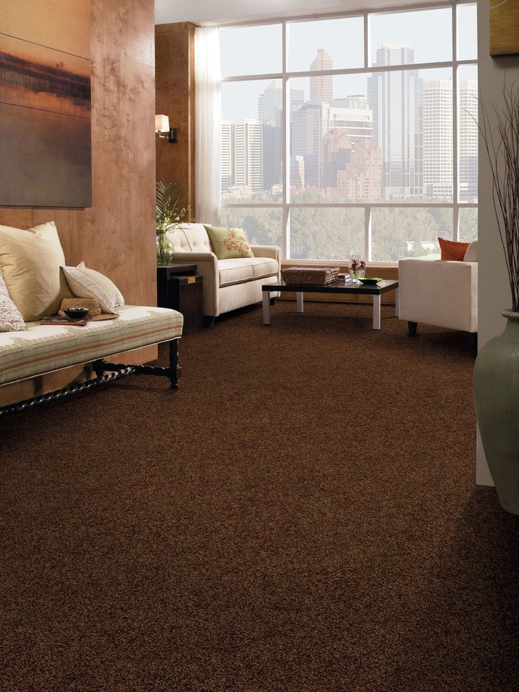 Carpet for Living Room Ideas Brown Carpet Living Room Ideas