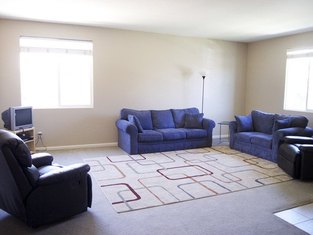 Carpet for Living Room Ideas Living Room area Rugs Living Room Rugs