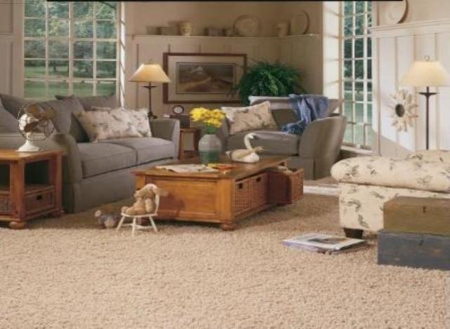 Carpet for Living Room Ideas Living Room Carpet Ideas Home Ideas Blog