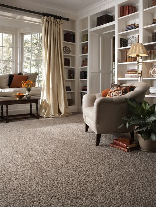 Carpet for Living Room Ideas Stainmaster Carpet Idea Gallery Carpets Rugs Love This