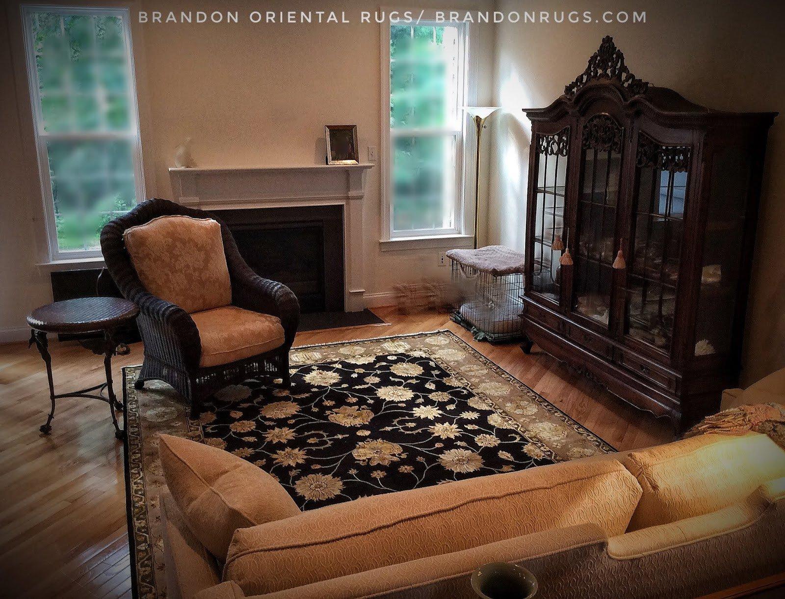 Comfortable Living Room Rugs Brandon oriental Rugs Bucks County Pa oriental Rug Store