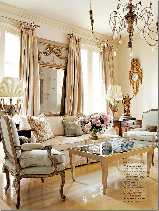 French Contemporary Living Room Purvaai Home Decor