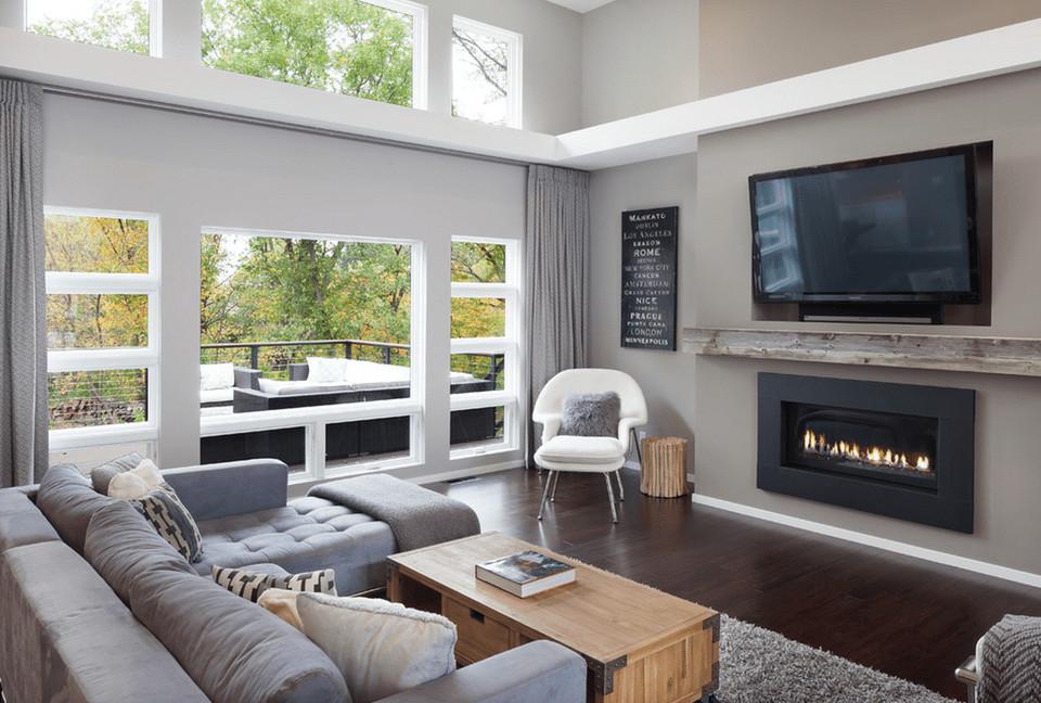 Gray Contemporary Living Room Gray Living Room Ideas