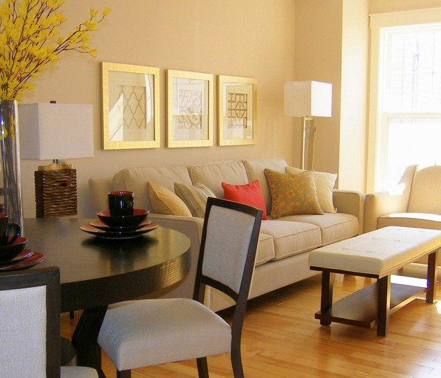 Modern Condo Living Room Decorating Ideas Small Condo Livingroom Modern Living Room Other