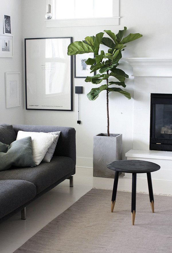 Modern Living Room Decorating Ideas Plant 20 Modern Indoor Garden with Scandinavian Style