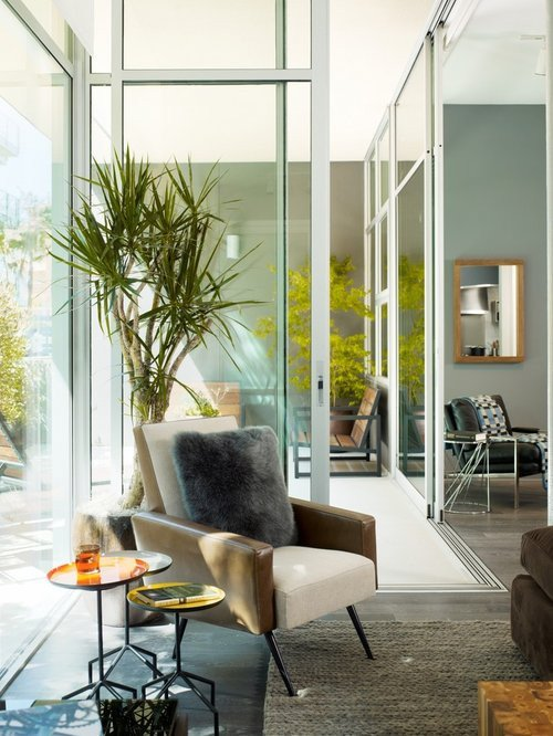 Modern Living Room Decorating Ideas Plant Contemporary Tall Indoor Plants Home Design Ideas