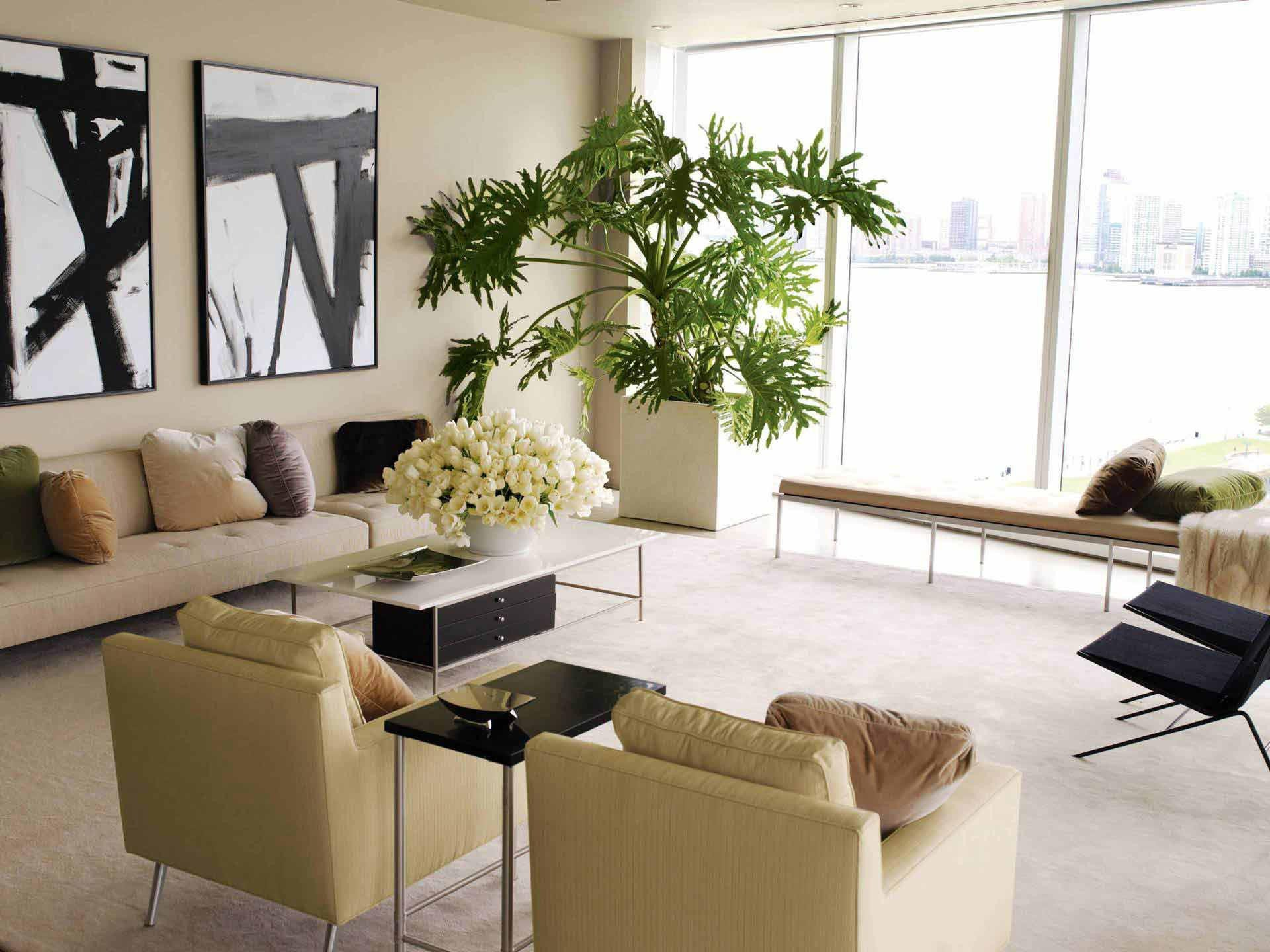 Modern Living Room Decorating Ideas Plant Decorating Our Homes with Plants Interior Design Explained