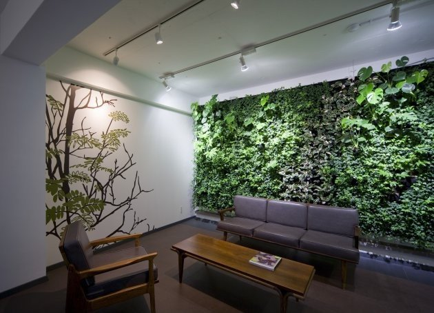 Modern Living Room Decorating Ideas Plant Green Walls