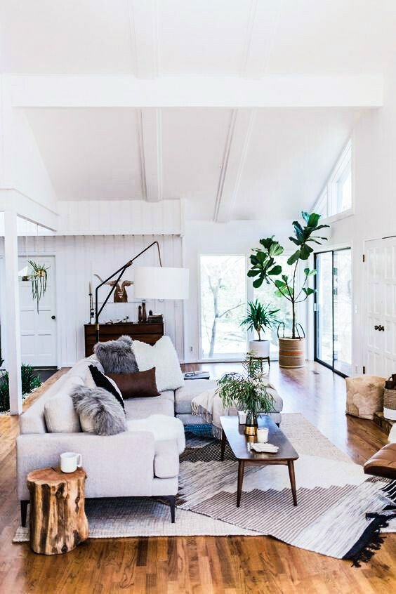 Modern Living Room Decorating Ideas Plant Open and Bright Living Room with White Colors and Plants