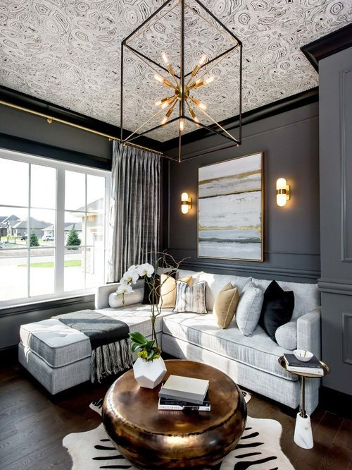 Modern Transitional Living Room Decorating Ideas Transitional Living Room Design Ideas Remodels & S