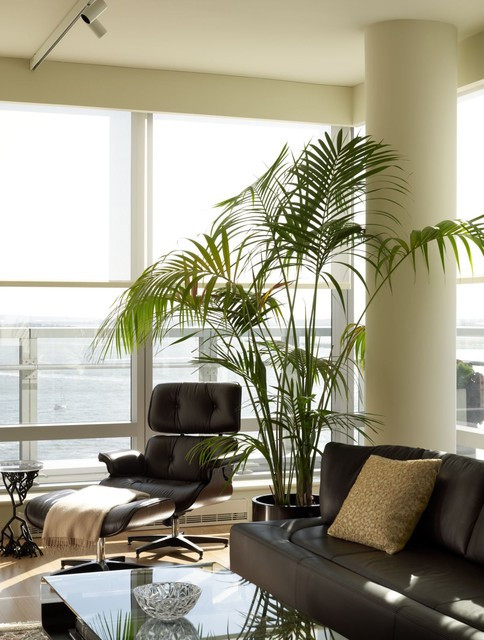 Palm Tree Decor for Bedroom Palm Trees Take Interiors On A Tropical Vacation
