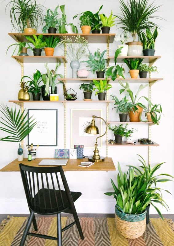 Plant Stand Ideas to Fill Your Living Room 15 Gorgeous Ways to Decorate with Plants