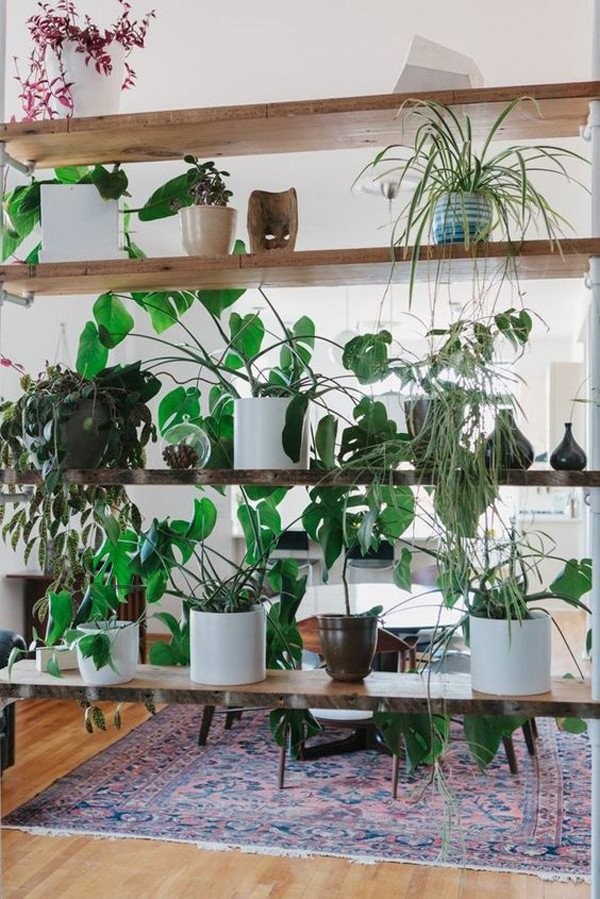 Plant Stand Ideas to Fill Your Living Room 15 Natural Plant Wall Ideas for Room Dividers