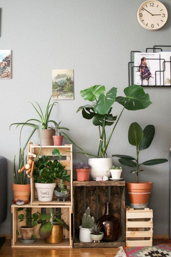 Plant Stand Ideas to Fill Your Living Room Pin by Julie Brown On Home Decor Ideas In 2019