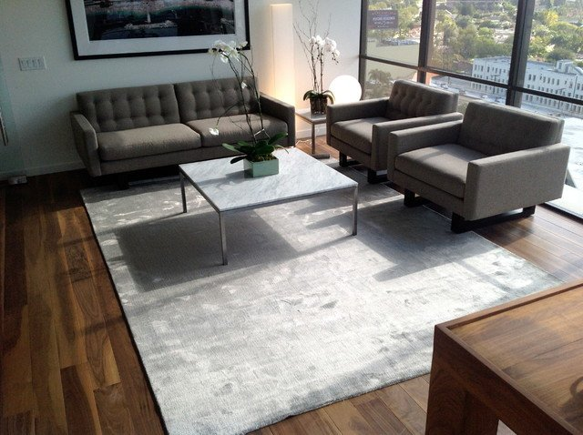 Rugs Contemporary Living Room Happy Customers Contemporary Living Room Los Angeles