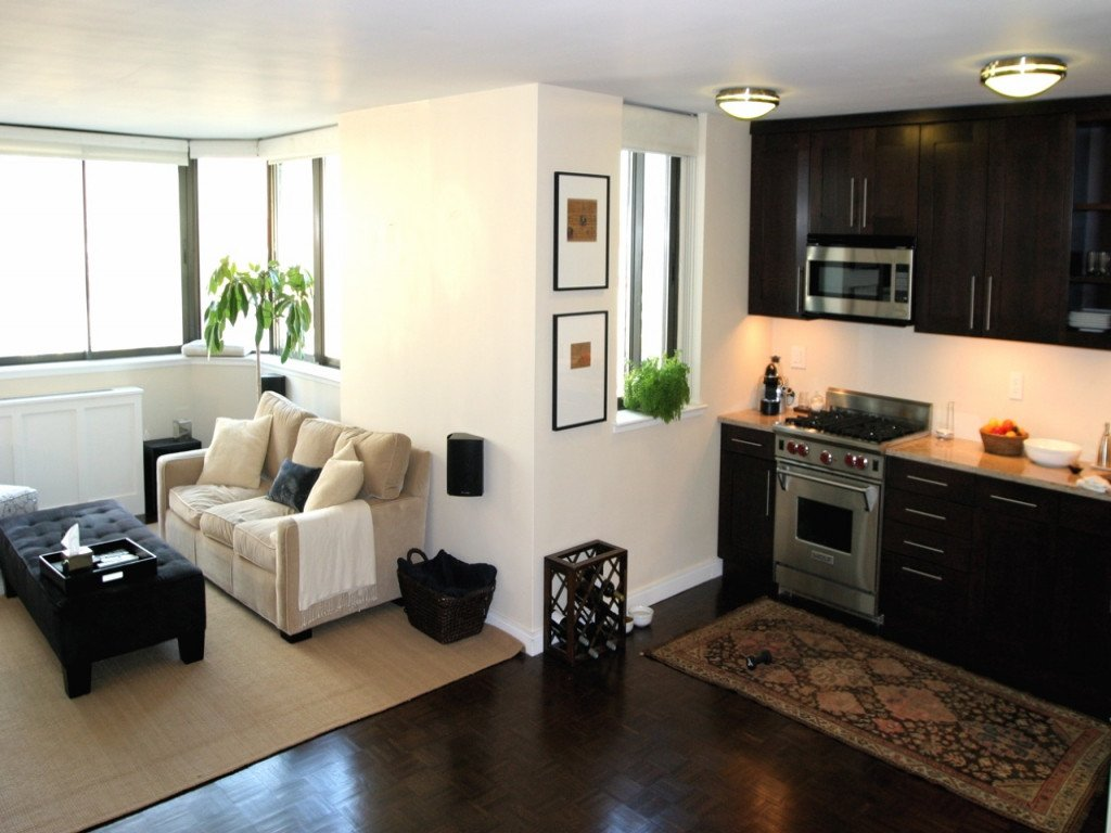 Small Apartment Living Room Decor Small Apartment Living Room Ikea Small Living Room Designs
