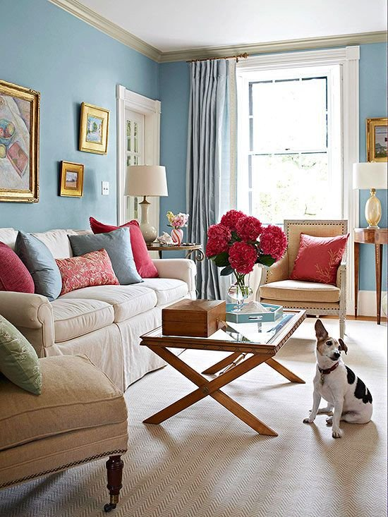 Small Blue Living Room Ideas Color Bos Using Blue Decorating