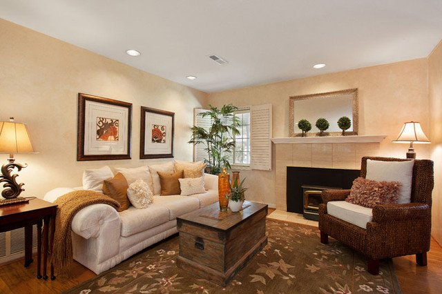 Small Living Room Staging Ideas Staging Ideas Traditional Living Room San Francisco
