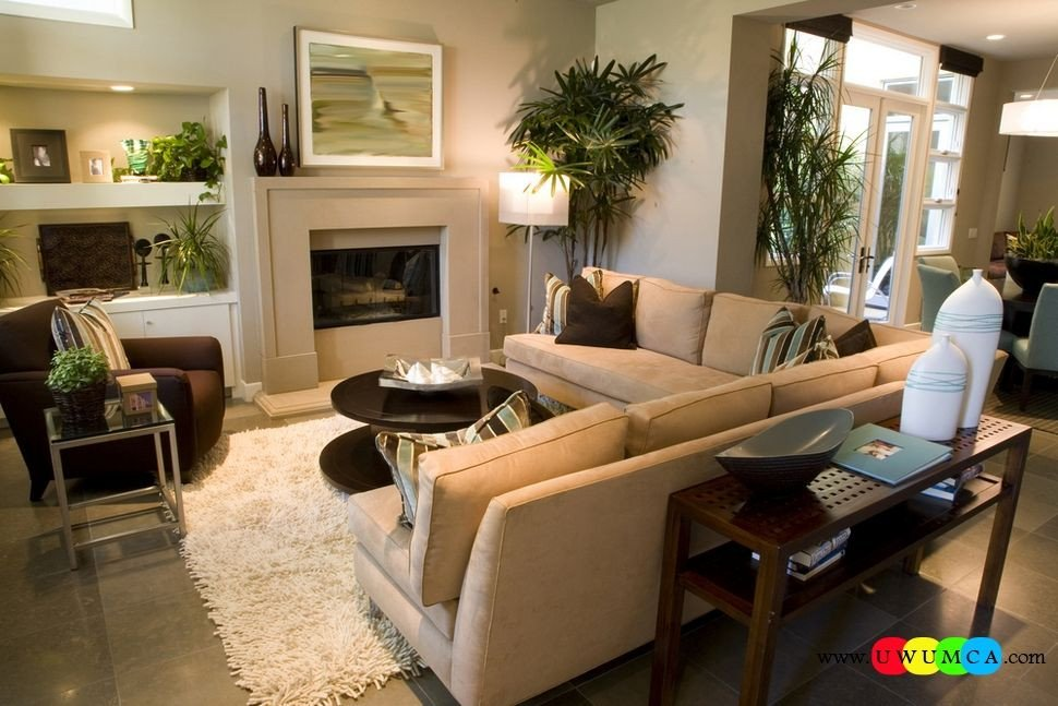 Small Rectangle Living Room Ideas Decoration Decorating Small Living Room Layout Modern