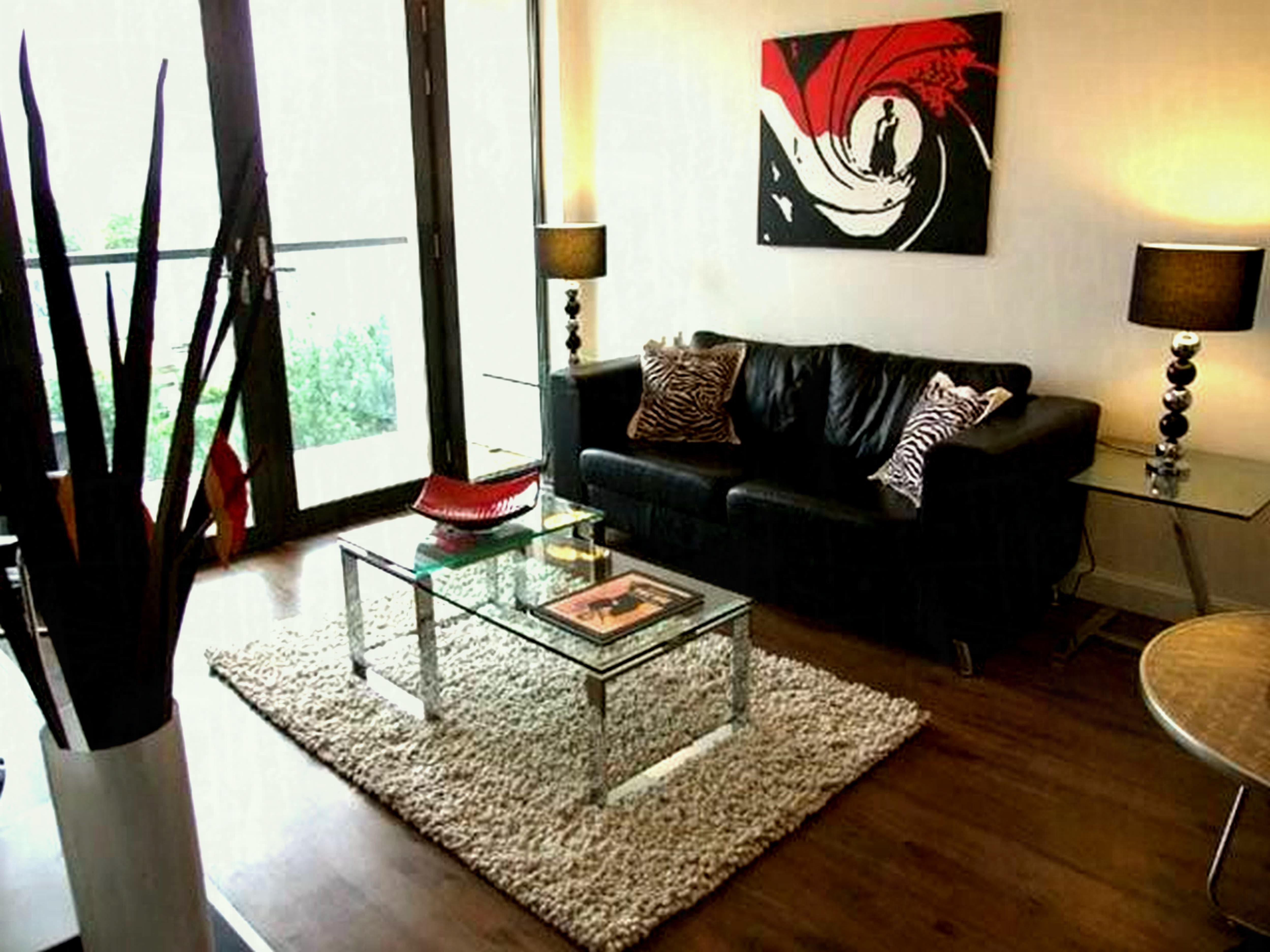 Smallmodern Living Room Decorating Ideas Decorating attractive Small Apartment Living Room Ideas