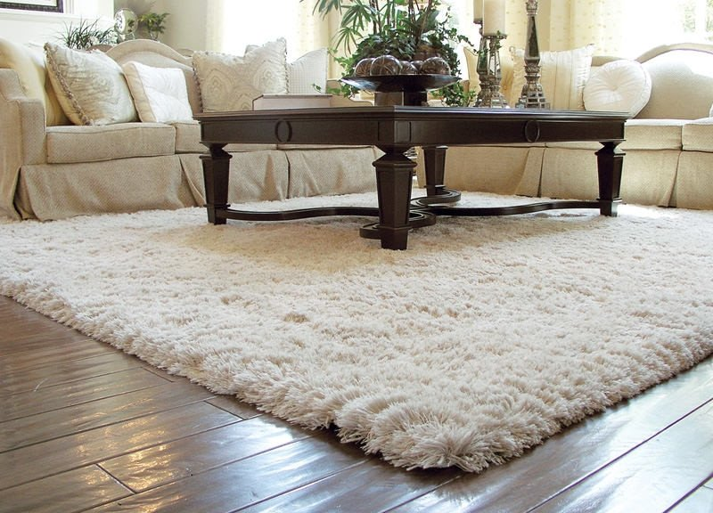 Traditional Living Room Carpets 13 Living Room Carpet Designs Decorating Ideas