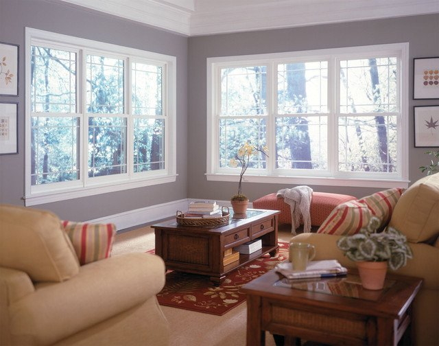 Traditional Living Room Windows Windows Traditional Living Room Other Metro by